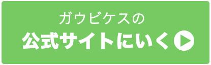 ガウビケス評判